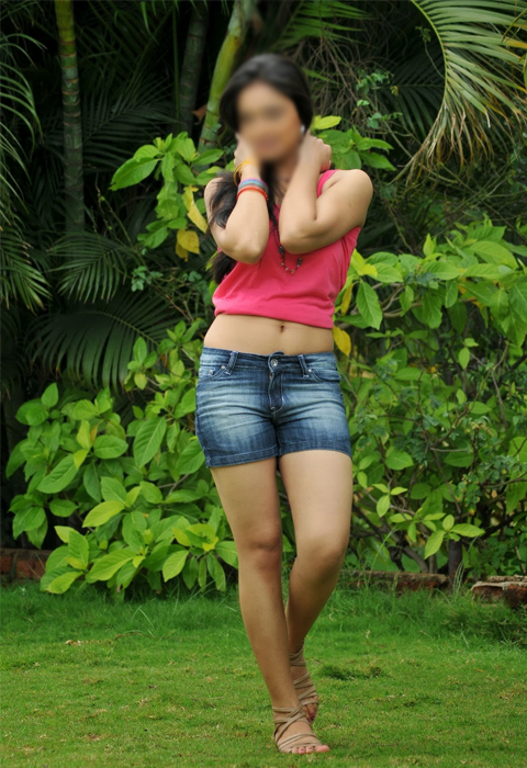 call girls ludhiana